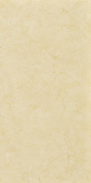 Kerlite 5plus Exedra 50x100x0,55 cm Marfil Glossy