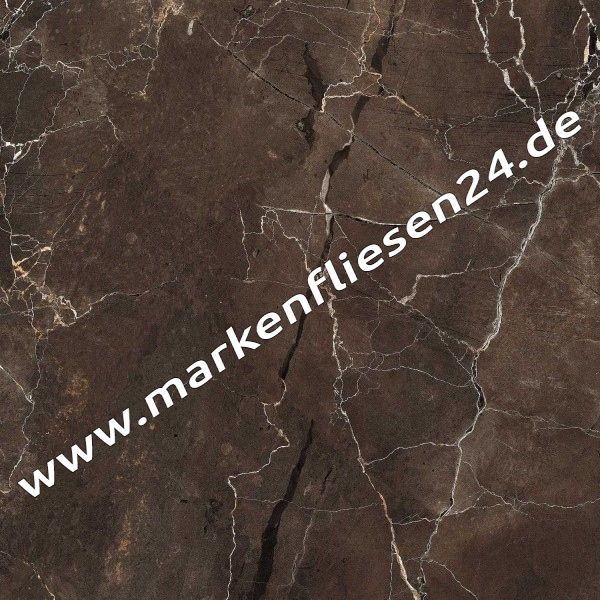 Mirage feinsteinzeug 60x60 cm jewels emperador selected jw05 lucido 1 sorte fliesen outlet - Fliesenforum karlsruhe ...