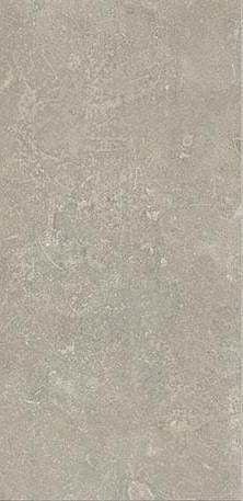Esprit de Rex 60x120 cm Neutral gris naturale