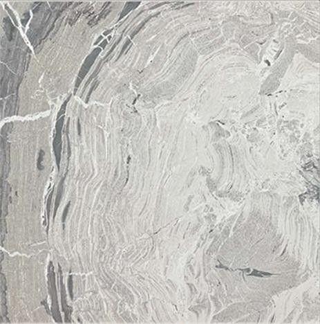 I Marmi di Rex 60x60 cm Marble Gray Shiny