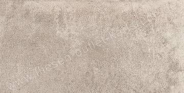 Emil Petra grey 30x60 cm naturale Art.634P8R