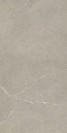 Esprit de Rex 60x120 cm Moderne gris naturale