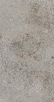 La Roche di Rex Grey 60x120 cm Anticato naturale